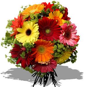 Foto de bouquê redondo de gérberas vermelhas, amarelas, cor de rosa e laranjas, salpicado com florzinhas brancas.